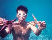 Diver with knobby starfish and jungle starfish