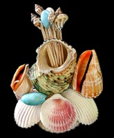 Scallop Shell W/ Toothpicks - Click For Larger View