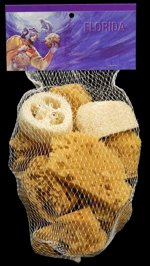 Florida Sponges in Net Bag - Click For Larger View