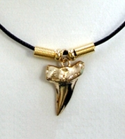 Shark Tooth Full 24K Gold Plated - Click For Larger View