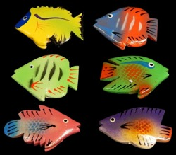 Assorted Angel Fish - Click For Larger View